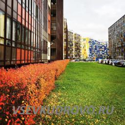 Осеннее Кудрово