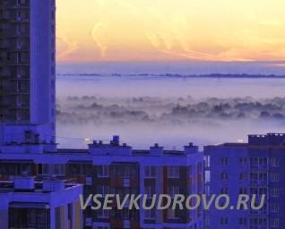 Красоты Кудрово