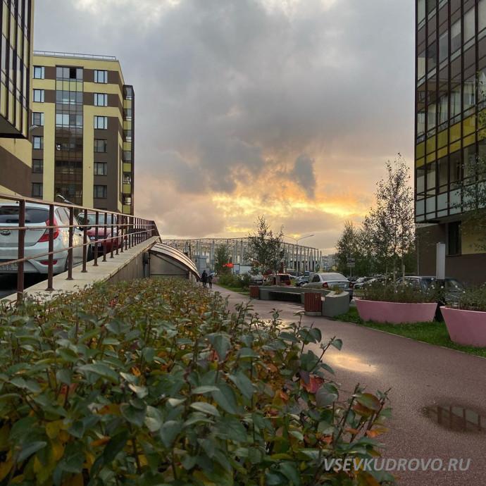осень в Кудрово