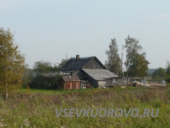 Деревня Кудрово до застройки