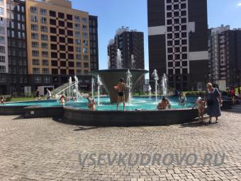 Купание в фонтане Кудрово
