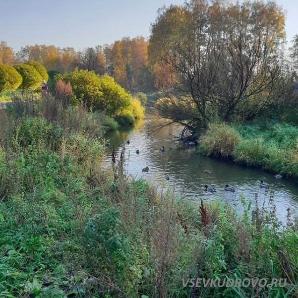Река Оккервиль в парке.