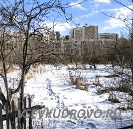 Деревня Кудрово Фото