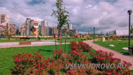 Любимый город Кудрово