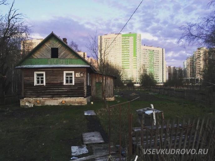 Деревянные домики Кудрово