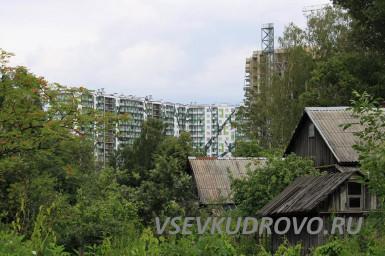 Между Кудрово и Петербургом