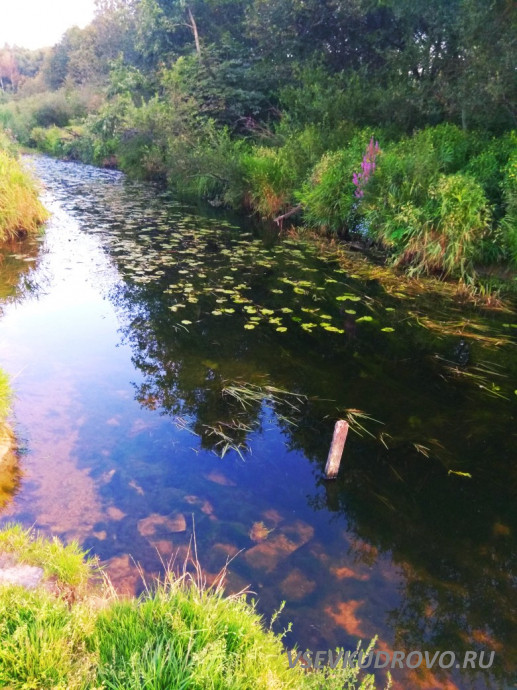 река Оккервиль