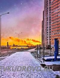 Кудровский сюр