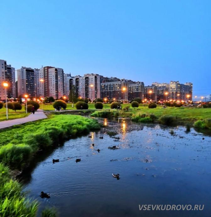 Лучшие фото Кудрово
