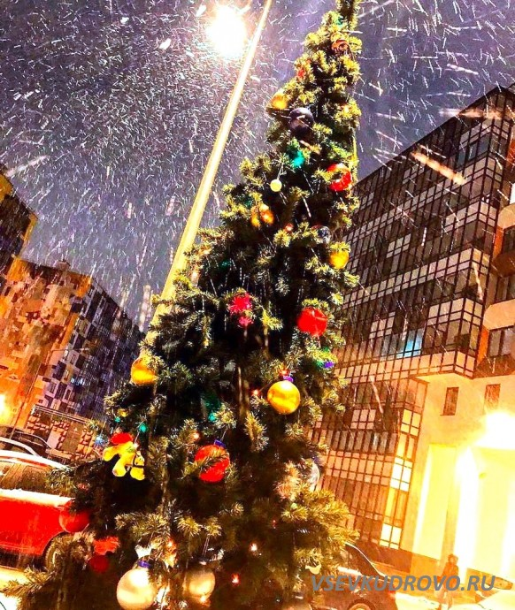 Новый год в Кудрово