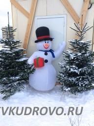 Снеговик в Кудрово