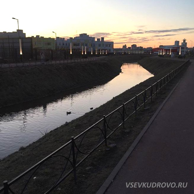 Вечернее Кудрово