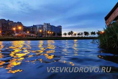 Лучший район Кудрово