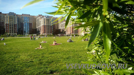 Отдых в парке Оккервиль
