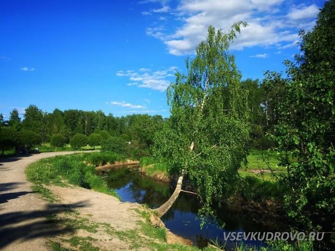 Парк Оккервиль Фото