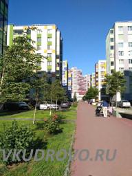 Улица Центральная Кудрово